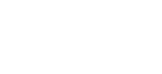 politiets-blaa-baretter